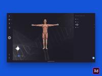 Human Anatomy Desktop App