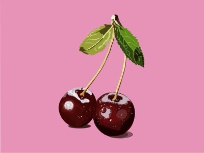 Cherries cherries vector illustration design