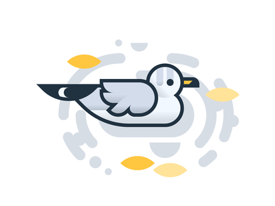 Good Birds of Amsterdam: Seagull