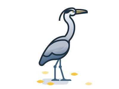 Good Birds of Amsterdam: Heron