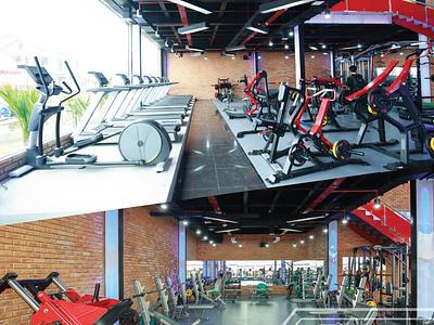 Top 5 liên hệ tập gym uy tín và chất lượng ở Quảng Bình yoga gym topquangbinh