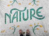 Nature Fauxsaics