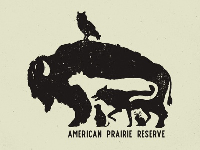 American Prairie Reserve illustration montana conservation jackalope coyote owl mountain lion cougar bison