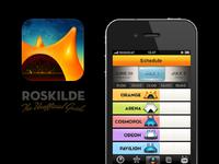 Roskilde dribbble large