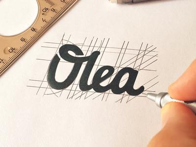 Olea - Rough Sketch gardener identity lettering olive sketch rough olea
