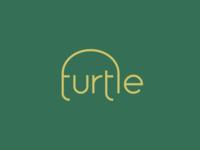 turtle 🐢