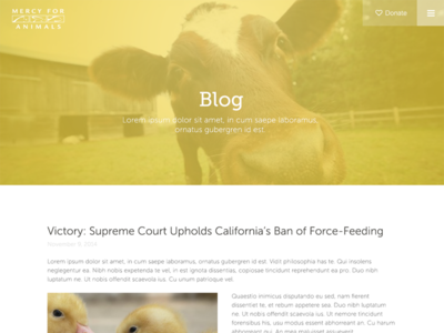 Mercy for Animals Blog blog donate responsive ui clean