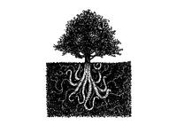 HMNIM Tree