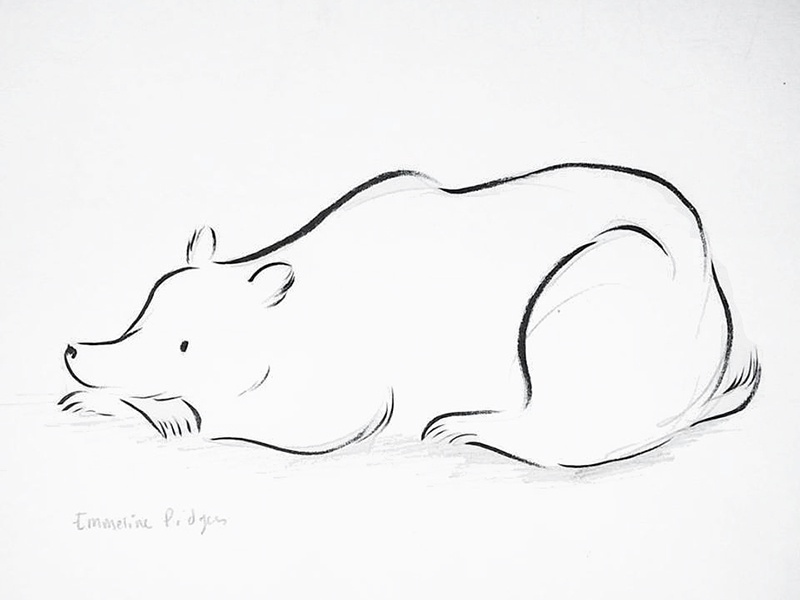 Bear Sketch animals bears bear ink drawing illustration