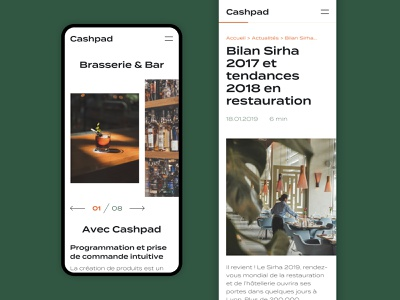Cashpad Mobile progress bar display pictures images article brand identity ui design uiux ui design