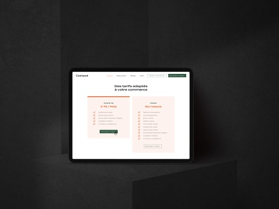 Cashpad Website & responsive brand identity reponsive responsive design mobile menu bar price uiux ui design ui web design website design