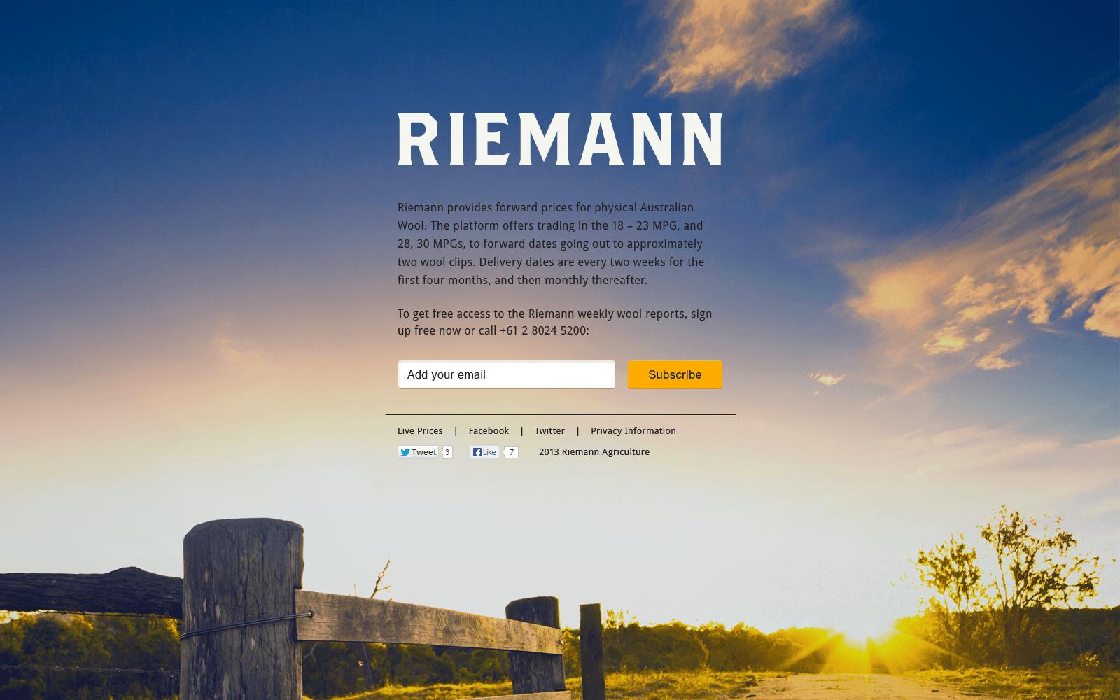 Riemannweblarge