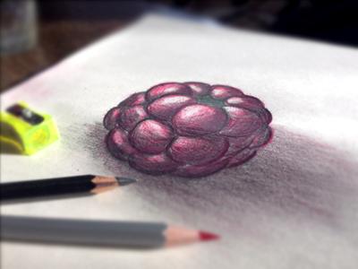 Hand drawn berry