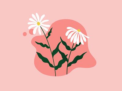 Daisies 🌼 graphic design banner vector illustration design