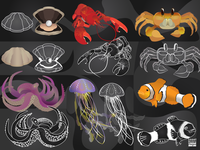 Illustrated Sea Creatures