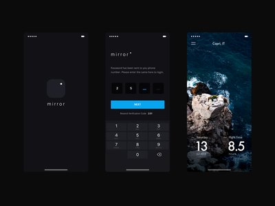mirror ui design flight simple mobile brandnew login clean minimal code app