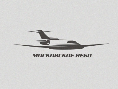 airplane logo illustration vector aircraft transportation sky tourism flights charter