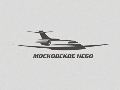 airplane logo illustration vector aircraft transportation sky tourism flights charter