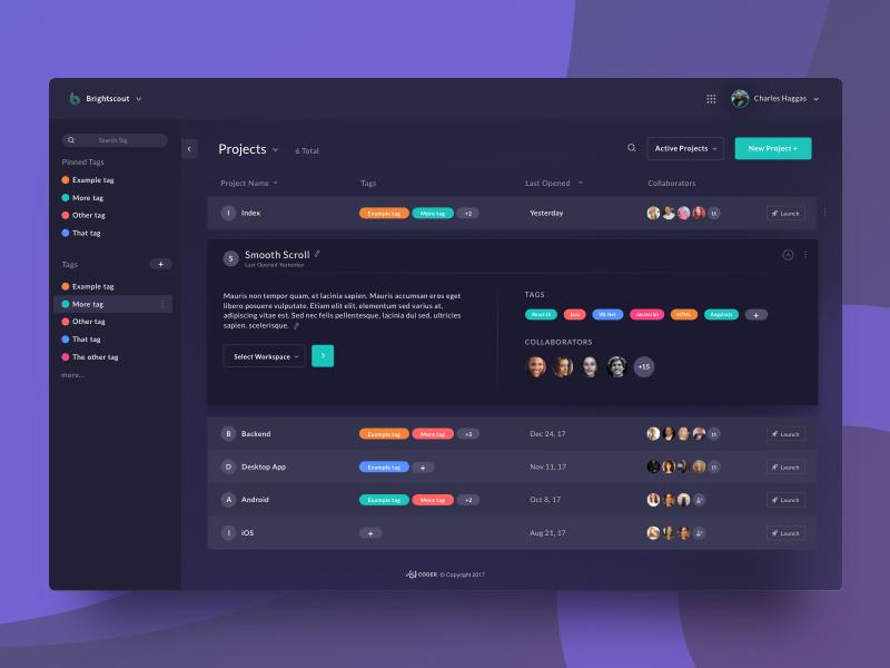Coder Dashboard - Info Reveal analytic project management dark dashboard programming coding ide code