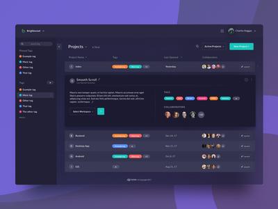 Coder Dashboard - Info Reveal