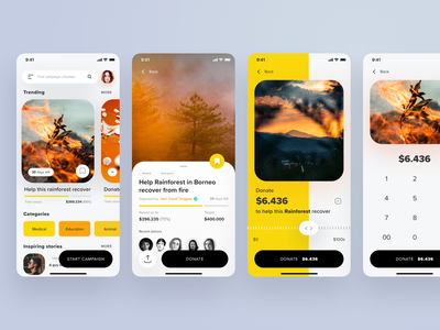 A Crowdfund Campaign App crowdfund crowdfunding payment keyboard slider ui cards minimal ios donation app social funding campaign charity