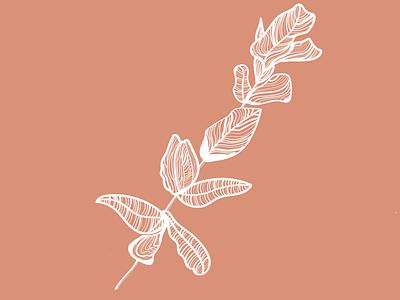 White Flower clean graphic design art web flat minimal logo vector design flower illustration