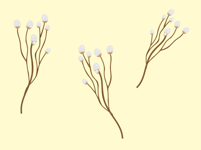 Cotton cotton vector brand logo flat web art flower graphic design illustration design