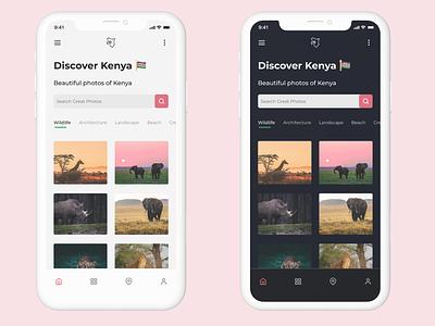 Discover Kenya Homepage Light & Dark Mode Designs nairobi dark mode architecture wildlife photo photography pictures travel flutter mobile kenya discover kenya