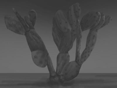 3D Nopal with next-gen filters.