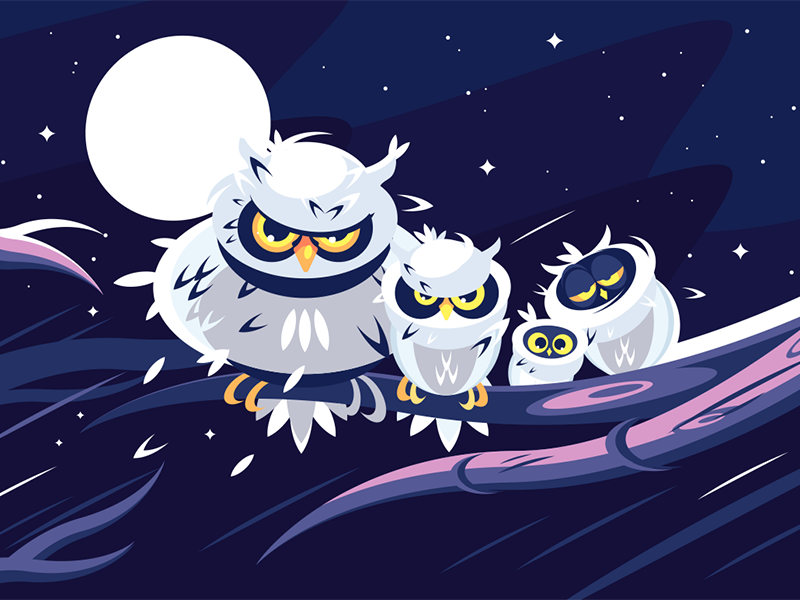 Owls sitting on branch character night darkness moon branch sitting owl kit8 flat vector illustration