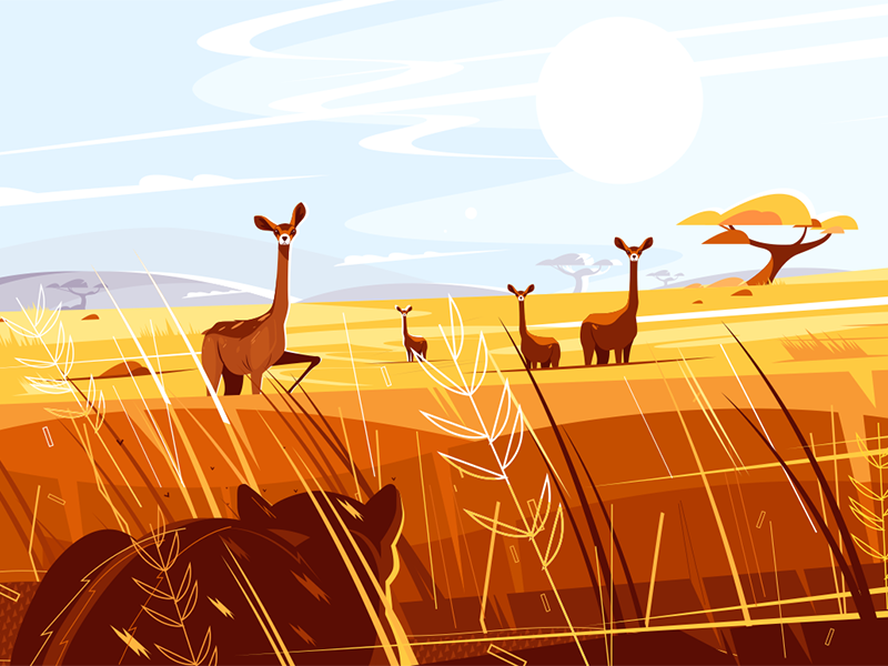 Wild picturesque savannah kit8 flat vector illustration character animal nature hunting tiger impala savannah wild