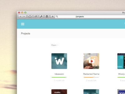 New project grid