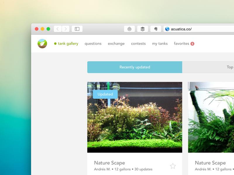 Acuatica Gallery gallery responsive mobile first aquarium community grid