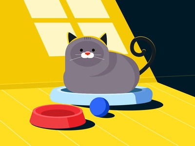 Weekend Cat home dribbble digital drawing daily art daily daily illustrations illustration design illustration art illustration cats cat design vector character animation flat