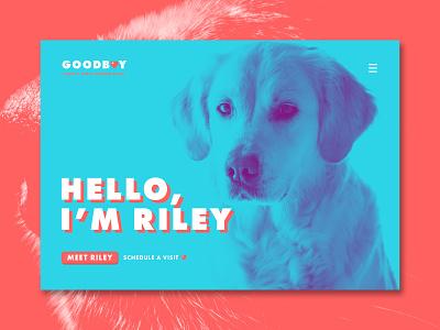 Goodboy - Landing Page Concept uiuxdesigner uidesign uidesigner graphicdesign uiuxdesign uiux ux ui product design photoshop dog