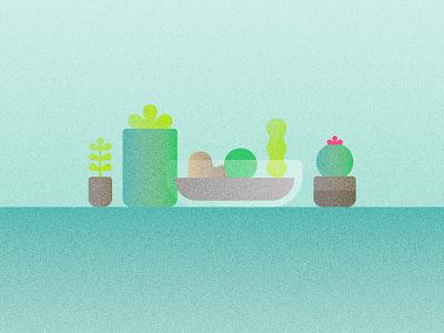 Succulents houseplants cactus cacti succulents illustration