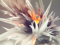 Everyday render #190 / Cyril