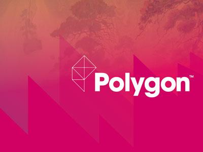 Bumper Concept Detail polygon bumper concept detail video