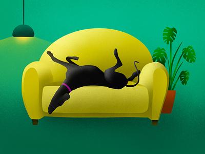 Roaching greyhound illustration sofa procreate plant living room light ipad pro greyhound green drawing dog illustration digital couch