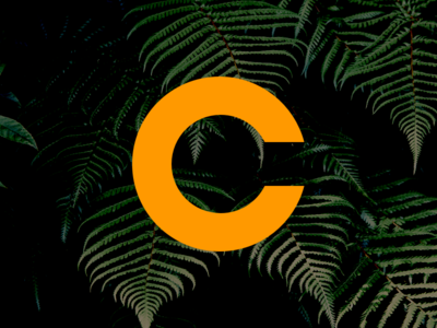 The Perfect C