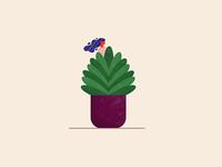 Plant 🌿👀