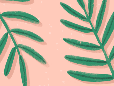🌿 tropical plants design vector illustration