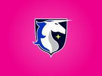 Unicorn Badge 2a