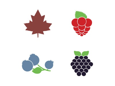 Syrup illustrations raspberry blueberry leaf illustrations label syrup berries