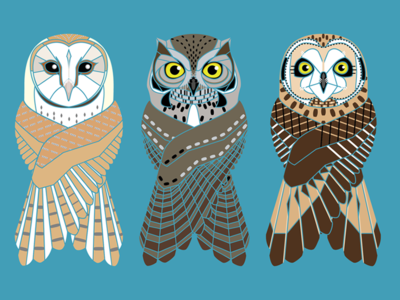3 Owls of Oregon