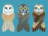 3 Owls of Oregon