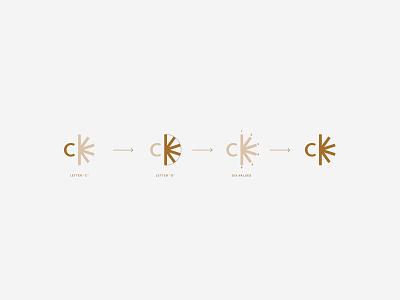 Chelsi Davis   Brand Identity psychology psychologist therapist therapy mental health mental wellness health d c vintage bold minimal logo design simple brand branding logo design