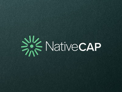 NativeCap | Brand Identity bold web spider web africa build investment invest money capital minimal logo design simple brand branding logo design