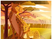 Animal Kingdom | Wild life