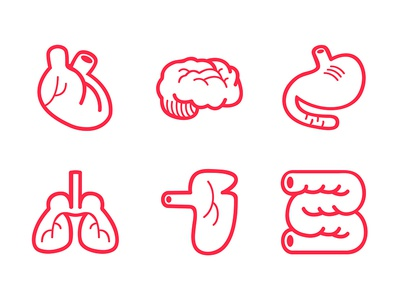 The Human Body Icon 6-Pack